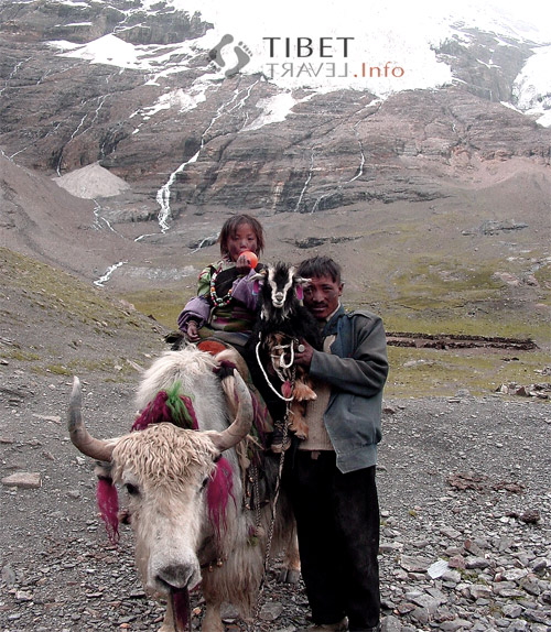 a review of the seven years in tibet by heinrich harrer Read seven years in tibet by heinrich harrer with rakuten kobo a landmark in travel writing, this is the incredible true story of heinrich harrer's escape across.